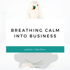 BREATHING CALM INTO BUSINESS via Shelley Cox, CEO & Founder of TheCoachingNest.ca (1)